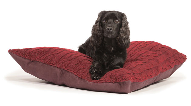 Cosy Dog Bed Uk