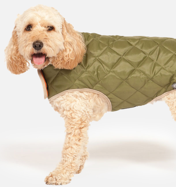 Danish Design Dog Coats   Danish Design Pet Products Dog Coats Archives Danish Design Pet
