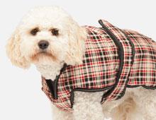 Luxury Dog Coat
